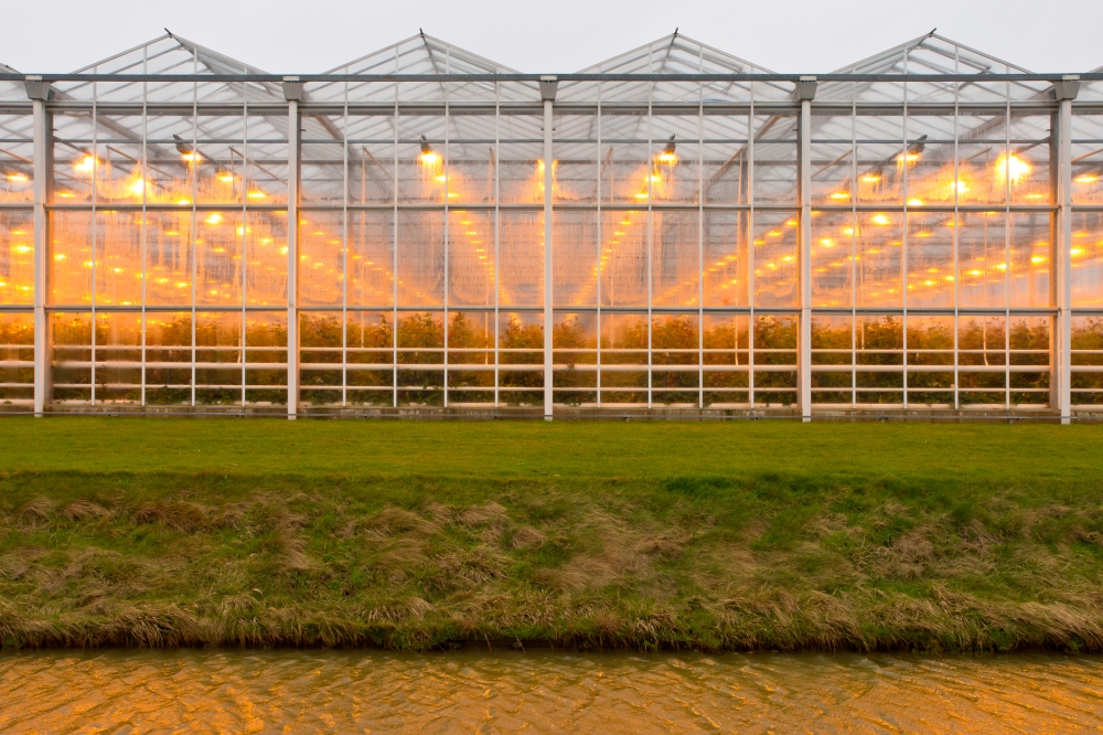 Greenhouse Side view lights